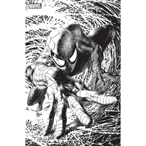 Spider-Man nº9 Variant Angoulême (VF)