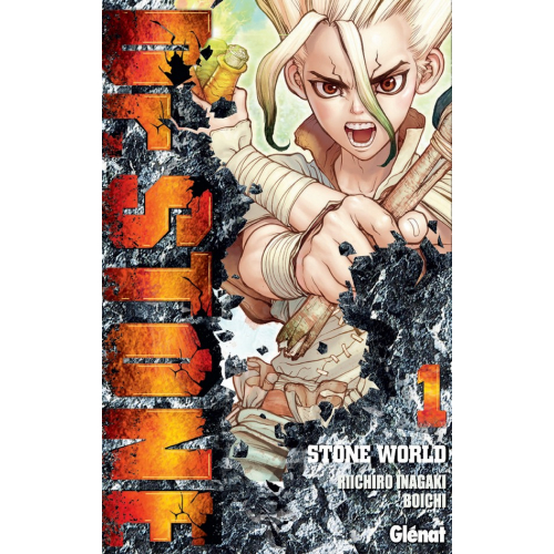 Dr Stone Tome 1 (VF)