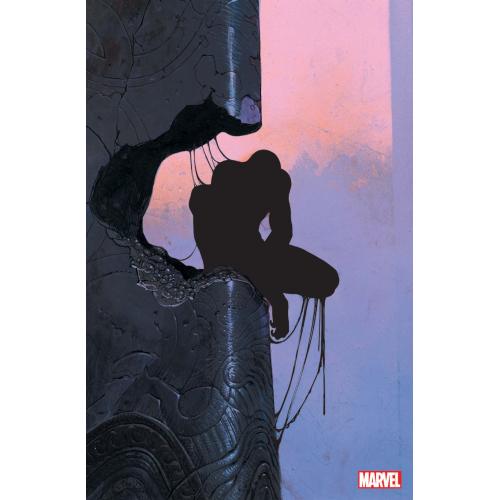 Spider-Man nº12 Variant Moebius (VF)