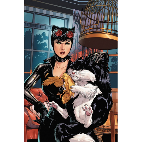 CATWOMAN TWEETY & SYLVESTER SPECIAL 1 (VO)