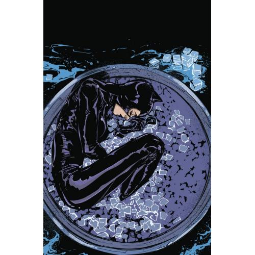 Catwoman 3 (VO)