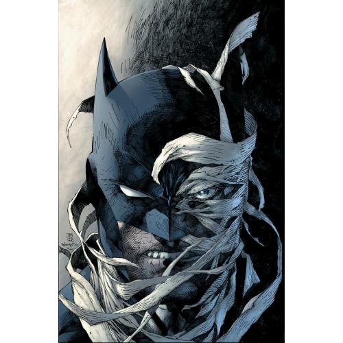 BATMAN THE HUSH SAGA OMNIBUS (VO)