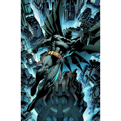 ABSOLUTE BATMAN & ROBIN THE BOY WONDER HC (VO)
