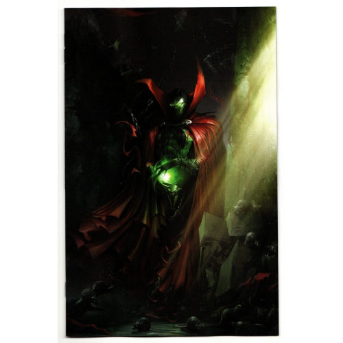 Spawn 291 Cover B (VO)
