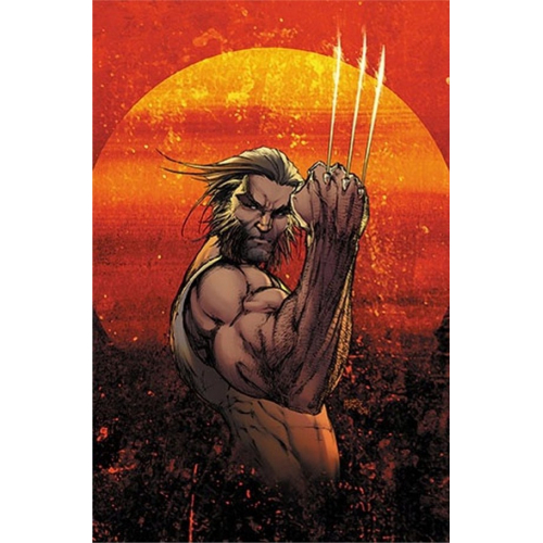 WEAPON X 1 VAR CVR A MICHAEL TURNER (VO)