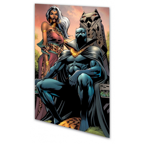 BLACK PANTHER TP BACK TO AFRICA (VO) occasion