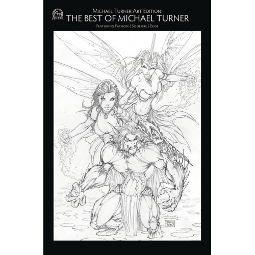 Tribute to Michael Turner Artbook - Hommage à Michael Turner