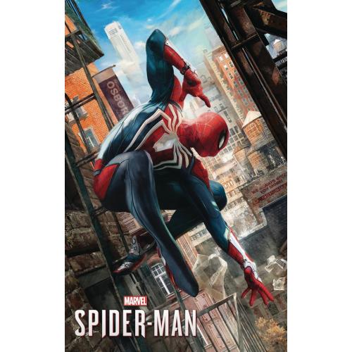 MARVELS SPIDER-MAN POSTER BOOK TP (VO)