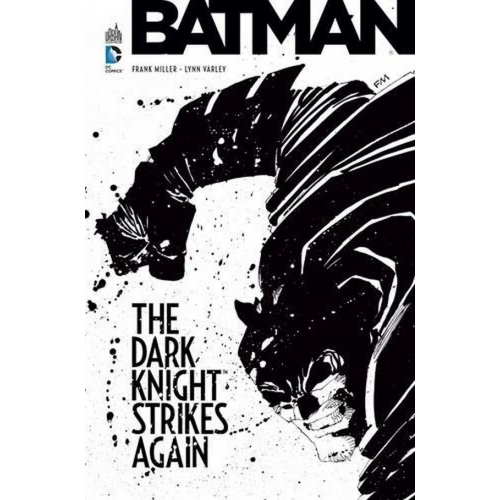 Batman : The Dark Knight Strikes Again (VF)