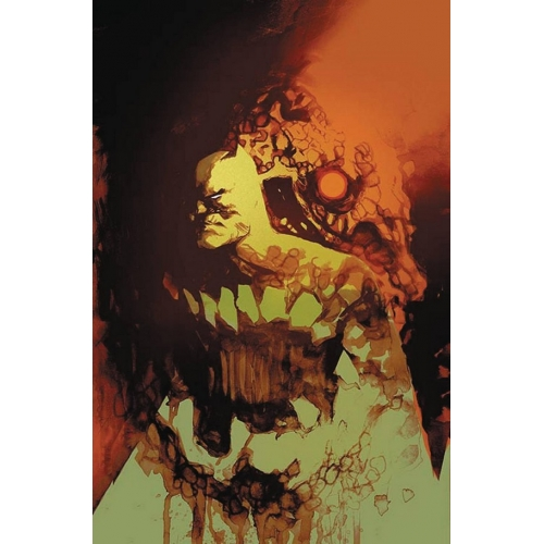Detective Comics 945 Rafael Albuquerque Cover (VO)