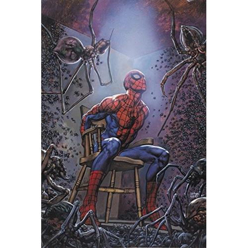 Spider-Man's Tangled Web Omnibus (VO)