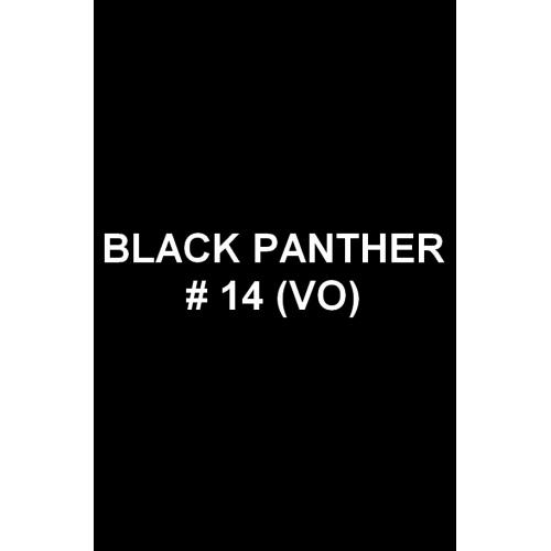 Black Panther 14 (VO)