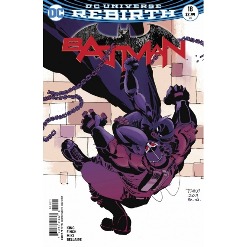 Batman 18 Tim Sale Variant (VO)