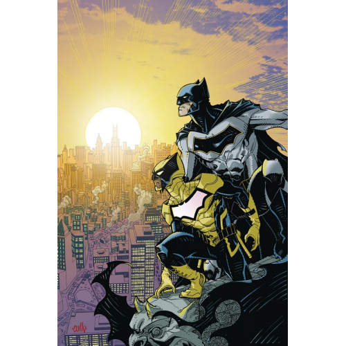 Batman and The Signal 1 (VO)
