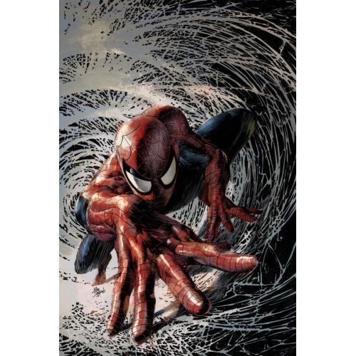 Spider-Man nº9 (VF)