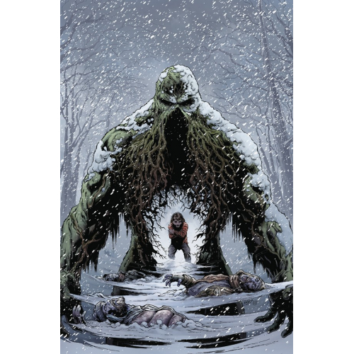 Swamp Thing Winter Special 1 (VO)
